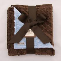 Blue & Brown Minky Blanket